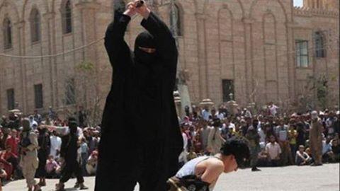Daesh exécute 4 adolescents à Raqqah