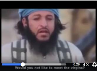 Regardez comment ces terroristes salafistes de Daesh pleurent après leur défaite en Syrie