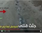 [Vidéo] | Les brigades du Hezbollah d'Irak exterminent un groupe de terroristes de Daesh à Tal 'Afar