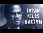 Il y a 52 ans, le 21 février 1965, Malcolm X était abattu par 3 tireurs pendant un discours