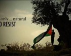 Nakba 2018 : La Palestine le cœur de l'Islam