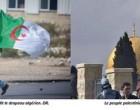 L'Algérie condamne «les actes criminels et terroristes» commis par les soldats de l'occupation israélienne et soutient la Palestine