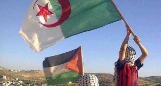 L'Algérie congédie l'Ambassadeur de l'Arabie Saoudite, qui traite le Hamas de groupe terroriste !