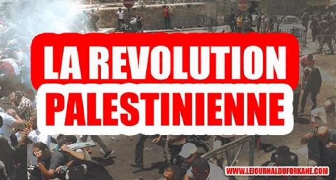 que pensez vous de l intifada soul vement palestinienne actuellement en cours le journal. Black Bedroom Furniture Sets. Home Design Ideas
