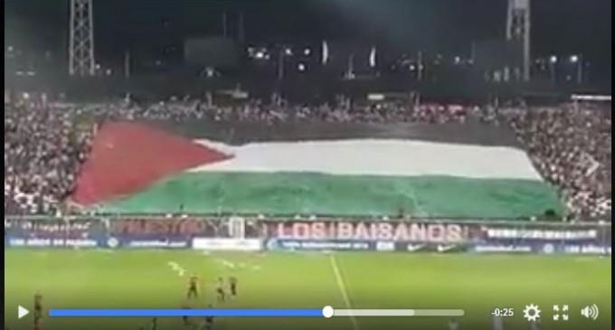 [Vidéo] | Regardez comment les Chiliens soutiennent la Palestine