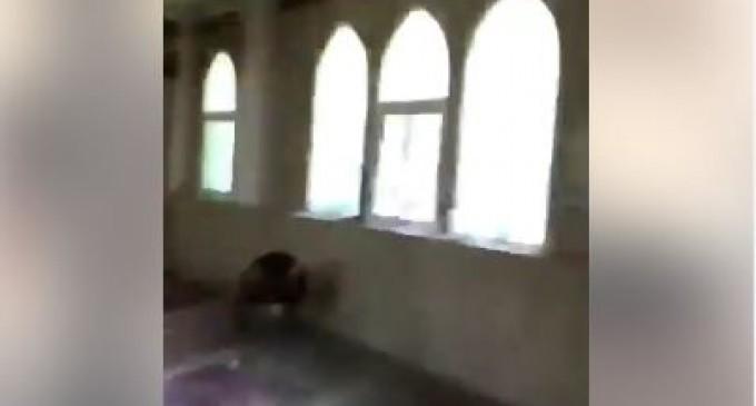 Regardez les maudits soldats saoudiens insultent une mosquée chiite et célèbrent sa prise dans la ville d'Al Awamiyah..