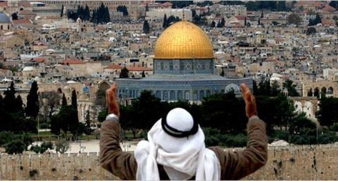 Le Journal du Forkane exprime son soutien sans faille et sa solidarité totale avec le peuple de Palestine. Depuis plus de 60 ans la Palestine est occupée