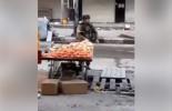 VRAIMENT PITOYABLE : Un soldat de l'occupation israélienne vole des fruits à un palestinien lors des affrontements à Al Khalil.