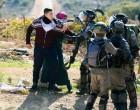 Une jeune palestinienne courageuse se tient face aux soldats israéliens, essayant de les empêcher d'arrêter son frère
