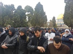 25 000 fidèles accomplissent la Prière du Vendredi dans la mosquée d'Al-Aqsa à Jérusalem occupée3