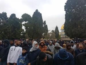 25 000 fidèles accomplissent la Prière du Vendredi dans la mosquée d'Al-Aqsa à Jérusalem occupée4