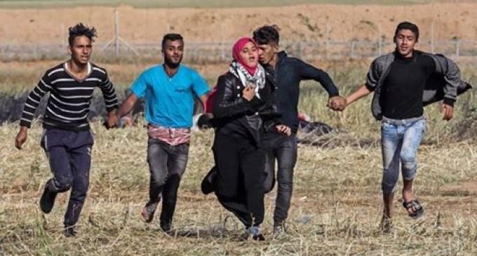 Incroyable photo de 4 Lions Palestiniens qui ont courageusement protégé cette jeune femme qui s'enfuit des tirs de balles des soldats de l'occupation