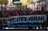 Dublin est devenue la première capitale européenne qui soutient la cause palestinienne.