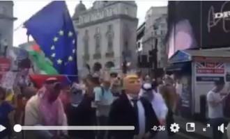 Londres ces jours-ci ; Les saoudiens et des Emirats enchaînés et entre les mains de Trump