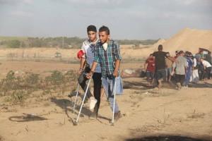 Malgré leurs blessures, ces palestiniens sont revenus