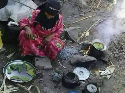 Cette femme yéménite et sa famille mangent des feuilles d'arbre comme repas quotidien pour survivre.