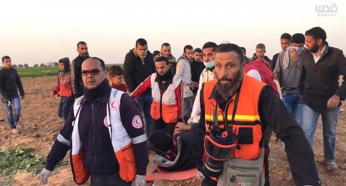 4 médecins Palestiniens ont été étouffés par inhalation de gaz après que des soldats de l'occupation israélienne ont tiré une bombe lacrymogène dans une ambulance à la frontière de Gaza à l'Est de Khan Younes