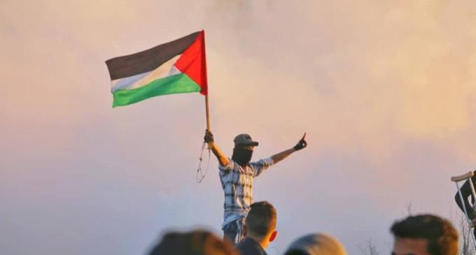 Photos de la Grande MArche du Retour de vendredi montrant de lourdes tirs de gaz lacrymogène sur les manifestants Palestiniens