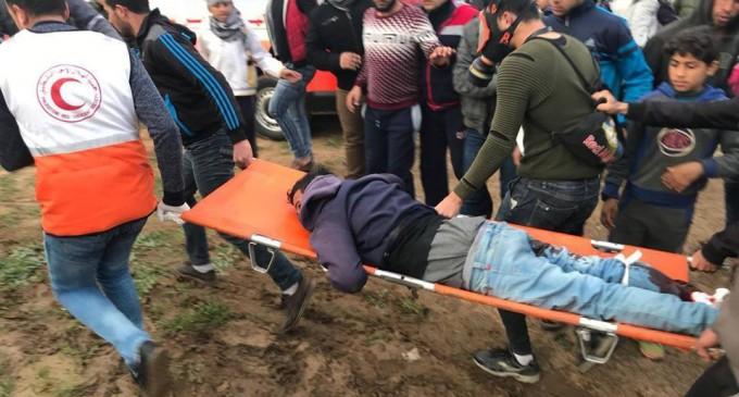 Plusieurs palestiniens ont été blessés par des tireurs d'élite des forces d'occupation vendredi lors des manifestations de la Grande Marche du Retour à Gaza