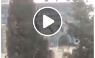 Les officiers de police israéliens montent le toit du Dôme du Rocher à l'intérieur de la mosquée Sainte d'Al Aqsa à Jérusalem occupée…