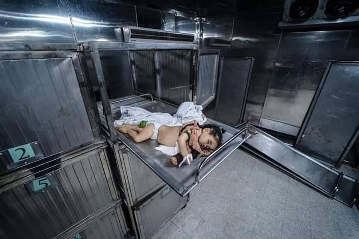 5 enfants palestiniens ont été tués par les frappes aériennes de l'armée d'occupation israélienne sur Gaza au cours des 2 derniers jours.1