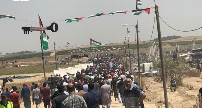 En photos : Des milliers de palestiniens se sont rendu aux frontières de la bande de Gaza pour réclamer leur droit de retourner dans leurs maisons et leurs terres, dont ils ont été expulsés en 1948 pour créer «Israël»