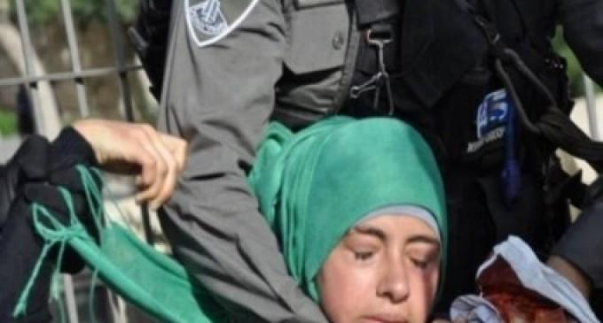 LE GROUPE DES DROITS DE L'HOMME : «ISRAËL» A ARRÊTÉ 2 600 PALESTINIENS EN 6 MOIS