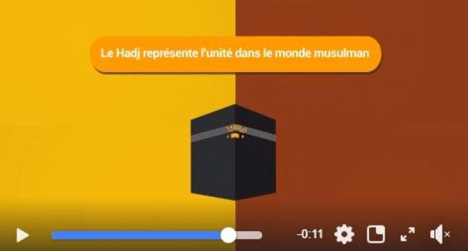 l'UNITE ISLAMIQUE, une leçon importante du Hajj et de la fête de l'Aïd. Pas de division entre Musulmans Chiites et Sunnites !