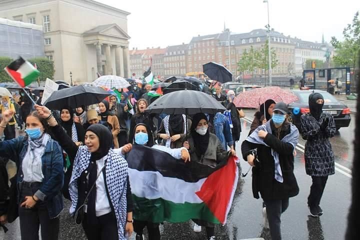 Les manifestants ont manifesté leur solidarité envers le peuple palestinien en chantant des slogans solidaires5