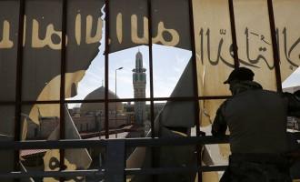 Daesh, un monstre aux pieds d'argile