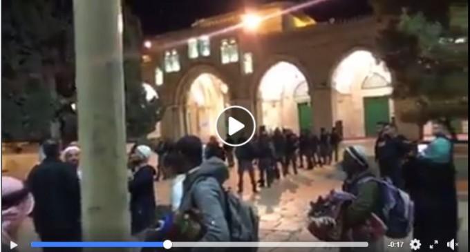 Regardez   Pour le 2ème jour de suite, les forces d'occupation israéliennes expulsent les fidèles musulmans de la mosquée d'Al Aqsa