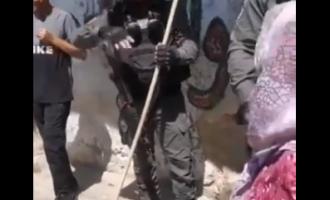Arrestation exceptionnelle des forces de sécurité de l'occupation sioniste : un balai