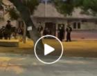 Les forces d'occupation tirent des balles en plomb et des grenades assourdissantes sur les fidèles à la mosquée Al-Aqsa.