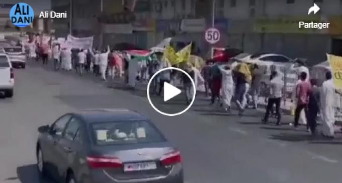 Les Bahreïnis participent à une manifestation à Manama pour protester contre la visite du ministre israélien des Affaires étrangères dans le royaume.